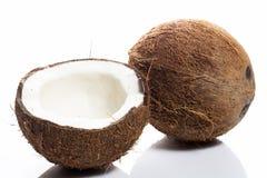 Kokosnötter på vitbakgrund Royaltyfri Fotografi