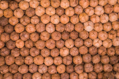 kokosnötter torkar Royaltyfri Foto