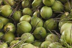 Kokosnötterna Arkivfoton