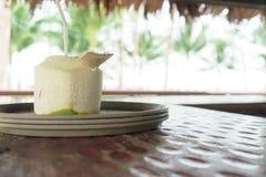 Kokosnötvatten i kokosnöt Royaltyfri Fotografi