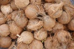 kokosnüsse lizenzfreie stockfotografie