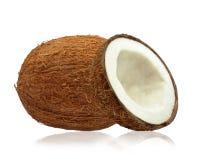 Kokosnüsse Lizenzfreies Stockbild