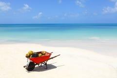 Kokosnüsse auf tropischem karibischem Strand Stockfotos