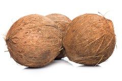 Kokosnüsse auf weißem Hintergrund Lizenzfreie Stockbilder