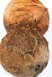 Kokosnüsse auf weißem Hintergrund Stockfoto