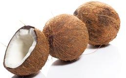 Kokosnüsse auf weißem Hintergrund Stockbild