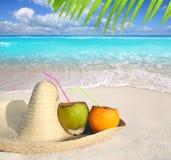 Kokosnüsse im karibischen Strand auf Mexikosombrerohut Stockbilder