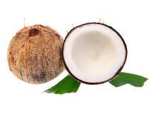 Kokosnüsse mit Blättern auf einem weißen Hintergrund Stockfotos
