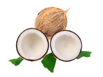 Kokosnüsse mit Blättern auf einem weißen Hintergrund Stockfotografie
