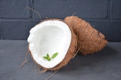 Kokosnüsse mit Minze, auf dunklem Hintergrund Kopieren Sie Platz Lizenzfreie Stockfotos