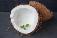 Kokosnüsse mit Minze, auf dunklem Hintergrund Kopieren Sie Platz Stockbilder