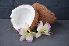 Kokosnüsse mit Minzen- und orhidblumen, auf dunklem Hintergrund Kopieren Sie Platz Stockfotos