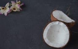 Kokosnüsse mit Minzen- und orhidblumen, auf dunklem Hintergrund Kopieren Sie Platz Lizenzfreie Stockfotos