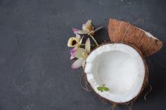Kokosnüsse mit Minzen- und orhidblumen, auf dunklem Hintergrund Kopieren Sie Platz Stockfotografie