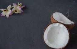 Kokosnüsse mit Minzen- und orhidblumen, auf dunklem Hintergrund Kopieren Sie Platz Lizenzfreies Stockfoto