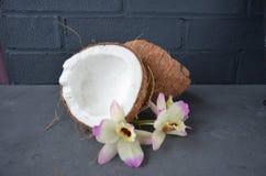 Kokosnüsse mit orhid Blumen, auf dunklem Hintergrund Kopieren Sie Platz Lizenzfreies Stockfoto