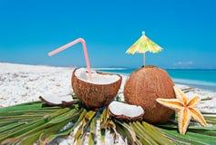 Kokosnüsse, Seestern und Palme Lizenzfreie Stockfotos