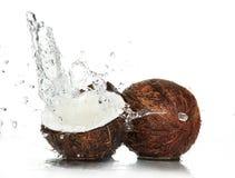 kokosnöt cracked plaska vatten arkivbilder