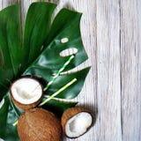 kokosn?tter och tropiskt blad av monsterav?xten med en pappers- sugr?rcoctail p? vit tr?bakgrund Plant lager, b?sta sikt, kopia arkivfoton
