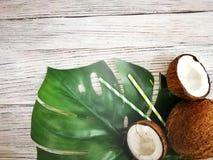 kokosn?tter och tropiskt blad av monsterav?xten med en pappers- sugr?rcoctail p? vit tr?bakgrund Plant lager, b?sta sikt, kopia arkivbilder