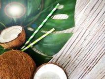 kokosn?tter och tropiskt blad av monsterav?xten med en pappers- sugr?rcoctail p? vit tr?bakgrund Plant lager, b?sta sikt, kopia fotografering för bildbyråer