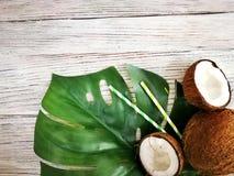 kokosn?tter och tropiskt blad av monsterav?xten med en pappers- sugr?rcoctail p? vit tr?bakgrund Plant lager, b?sta sikt, kopia royaltyfria foton