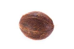Kokosnoot die op wit wordt geïsoleerd Royalty-vrije Stock Foto