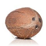 Kokosnoot die op wit wordt geïsoleerda Stock Afbeeldingen