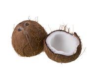 Kokosnoot die op witte achtergrond wordt geïsoleerd royalty-vrije stock foto