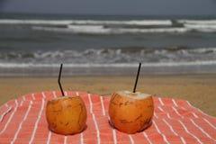 Kokosnoot door het strand Stock Foto's