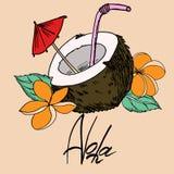 Kokosnoot en aloha vullen de het inschrijvings zwarte overzicht en kleur vectorbeeld stock illustratie