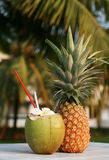 Kokosnoot en ananas stock fotografie