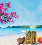Kokosnoot en ananasdrank onder roze bloemen Royalty-vrije Stock Afbeeldingen