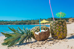 Kokosnoot en ananassen door de kust Stock Foto