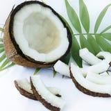Kokosnoot en blad Stock Foto's