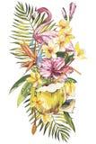 Kokosnoot en flamingo met de exotische tropische illustraties van de bloemenwaterverf stock illustratie