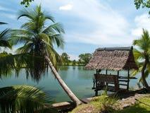 Kokosnoot en kleine hut Stock Fotografie