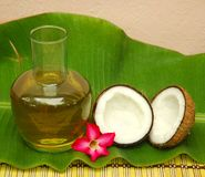 Kokosnoot en kokosnotenolie Stock Afbeeldingen