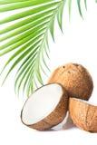 Kokosnoot en kokosnotenolie Stock Foto