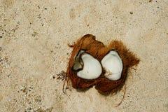 Kokosnoot, gebroken open op zand. Stock Foto