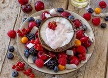 Kokosnoot half met yoghurt Royalty-vrije Stock Afbeelding