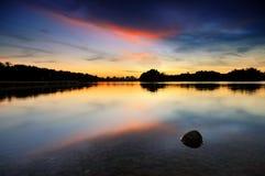 Kokosnoot in het water tijdens zonsondergang bij Moerasland Putrajaya Royalty-vrije Stock Foto's