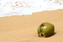 Kokosnoot in het zand Royalty-vrije Stock Afbeeldingen