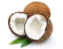 Kokosnoot met bladeren Stock Foto's