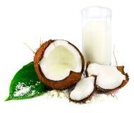 Kokosnoot met glas van kokosmelk en groen blad Stock Afbeelding