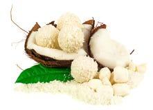Kokosnoot met kokosnotensuikergoed stock foto