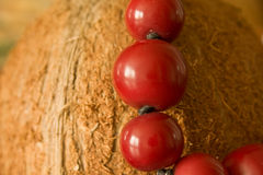 Kokosnoot met kostuumjewelery royalty-vrije stock afbeeldingen
