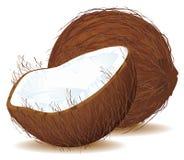 Kokosnoot met Melk Royalty-vrije Stock Fotografie