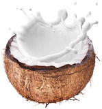 Kokosnoot met melk binnen plons stock afbeeldingen