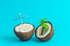 Kokosnoot met parasol en palm tropisch eiland abstract concept Royalty-vrije Stock Afbeeldingen